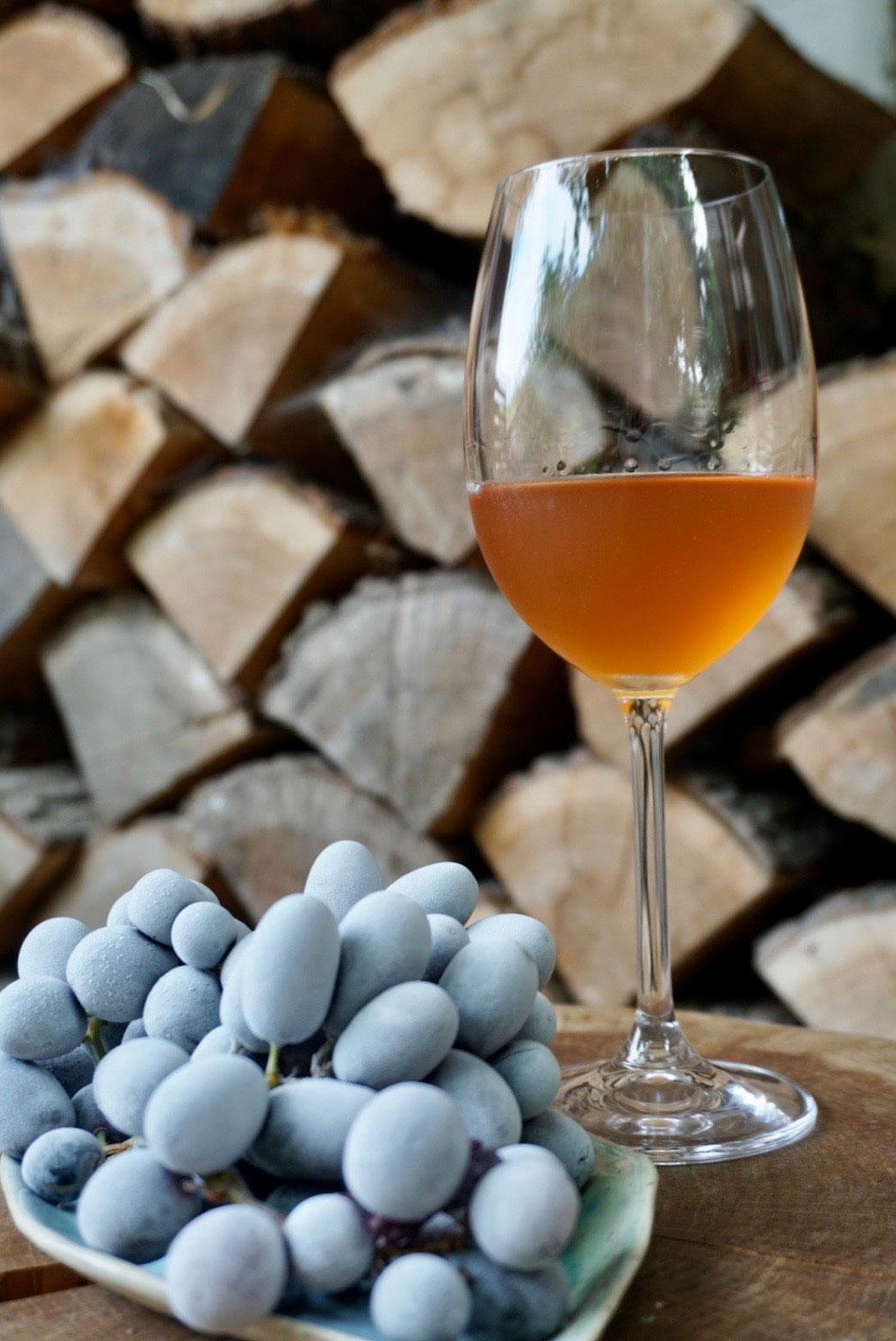 winnica-jerzmanice-4